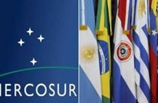 Tạo dựng mối quan hệ giữa các doanh nghiệp Mercosur với Việt Nam