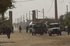 Đức có kế hoạch triển khai máy bay trực thăng vũ trang tới Mali