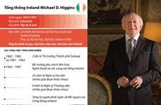 [Infographics] Tổng thống Ireland thăm cấp Nhà nước tới Việt Nam