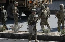 Taliban kêu gọi ông Trump rút binh sỹ Mỹ khỏi Afghanistan