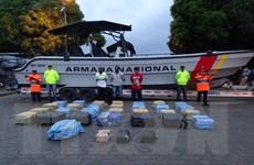 Hải quân Colombia thu giữ lượng 1,6 tấn cocaine giấu trong kiện hàng