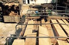 Liên tiếp bắt giữ các vụ vận chuyển gỗ lậu không rõ nguồn gốc