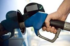 """Các """"đại gia"""" ôtô muốn ngăn cản quy định mới về tiết kiệm nhiên liệu"""