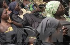 Nigeria giải cứu hơn 600 con tin từ tay phiến quân Boko Haram