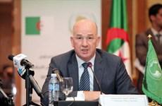 AU: 2.500 phần tử IS chạy trốn từ Syria và Iraq tới khu vực Sahel