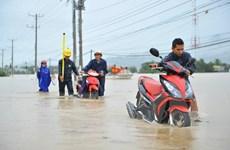 Ninh Thuận thiệt hại nặng, thủy điện ở Gia Lai xả lũ cường độ lớn