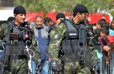 Tunisia triệt phá một mạng lưới tuyển mộ chiến binh thánh chiến trẻ