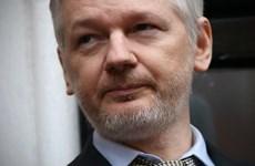 Người sáng lập Wikileaks phản bác cáo buộc phạm tội cưỡng bức tình dục