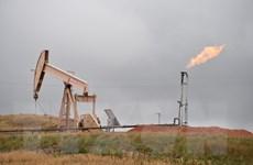 EIA: Mỹ sẽ trở thành nước xuất khẩu năng lượng ròng vào năm 2026