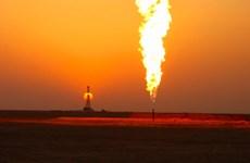 Iran tranh thủ hưởng lợi từ thỏa thuận cắt giảm sản lượng dầu mỏ