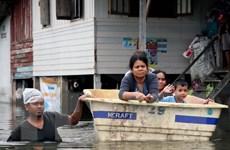 Mưa lớn tiếp tục đổ xuống miền Nam Thái Lan, 25 người thiệt mạng