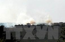 Ukraine điều tra hình sự vụ máy bay Antonov-26 bị bắn ở Biển Đen