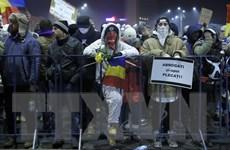 Romania: Biểu tình phản đối sắc lệnh miễn truy tố quan chức tham nhũng