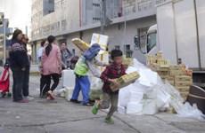 Người dân ào vào bãi rác thu nhặt 700 thùng khoai tây quá hạn