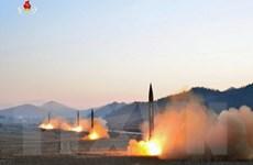 Hội đồng Bảo an ra tuyên bố lên án hành động của Triều Tiên