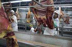 Brazil khôi phục lòng tin người tiêu dùng sau bê bối thịt bẩn