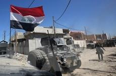 Các lực lượng Iraq giành thêm khu vực mới từ tay IS ở Tây Mosul