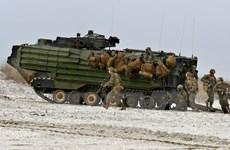 Hàng trăm binh lính Mỹ và Romania tập trận bắn đạn thật