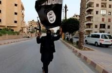 Nga: IS đang xây dựng mạng lưới khủng bố toàn cầu mới