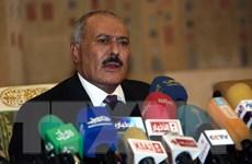 Cựu Tổng thống Yemen Saleh để ngỏ khả năng đàm phán với Saudi Arabia