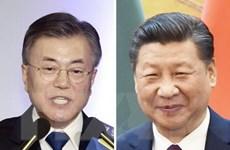 Tổng thống Hàn Quốc cử phái đoàn về THAAD và Triều Tiên đến Trung Quốc
