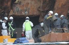 Nghi phạm liên quan vụ chìm phà Sewol bị dẫn độ từ Pháp về Hàn Quốc