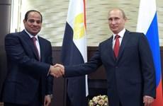 Nga và Ai Cập bàn về quan hệ song phương và tình hình Trung Đông