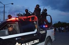 Đấu súng dữ dội trong nhà tù Mexico khiến 7 người thiệt mạng