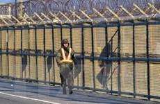 Binh sỹ Triều Tiên đào tẩu qua khu phi quân sự ở biên giới liên Triều