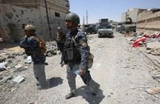 Lực lượng Iraq chỉ còn cách căn cứ địa của IS khoảng 300 mét