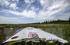 Malaysia: Có khả năng xác minh được nghi phạm vụ bắn rơi MH17