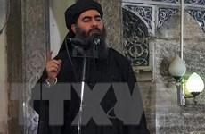 Trùm tình báo Iraq dự đoán thủ lĩnh IS Baghdadi chưa bị tiêu diệt