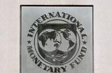 IMF công bố công cụ hỗ trợ tài chính mới không sử dụng tiền