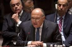 Ai Cập kêu gọi thực thi nghị quyết cấm cung cấp vũ khí cho khủng bố