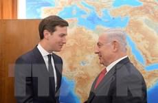 Tổng thống Donald Trump cử con rể Jared Kushner đến Trung Đông