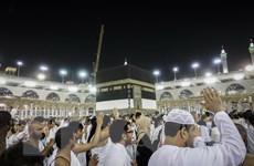 Hơn 2 triệu người Hồi giáo trên thế giới bắt đầu lễ hành hương Hajj