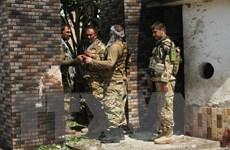 Afghanistan tiêu diệt 20 tay súng phiến quân tại huyện chiến lược