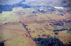 Giải mã những hình thù bí ẩn được khắc tại vùng rừng Amazon