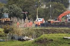 Nghị sỹ New Zealand được lệnh cấm bay sau khi đường ống lọc dầu bị vỡ