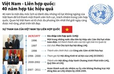 [Infographics] 40 năm hợp tác hiệu quả giữa Việt Nam và Liên hợp quốc