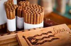 Lệnh cấm vận của Mỹ làm ngành cigar Cuba thiệt hại hơn 600 triệu USD