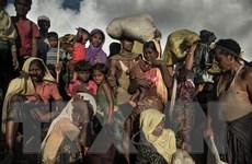 Lãnh đạo quân đội Myanmar không nhượng bộ trong vấn đề Rohingya