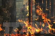 23 người thiệt mạng, 550 người mất tích sau thảm họa cháy rừng ở Mỹ