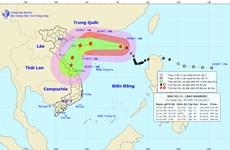 Bão số 11 có khả năng suy yếu thành áp thấp nhiệt đới