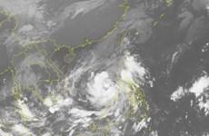Áp thấp nhiệt đới trên biển Đông đã mạnh lên thành cơn bão số 12