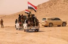 Iraq tấn công thị trấn cuối cùng do tổ chức IS kiểm soát
