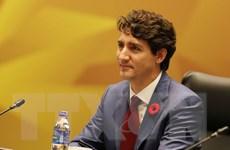 Thủ tướng Canada khẳng định cam kết đối với hoạt động thương mại mở