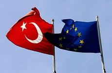 Liên minh châu Âu quyết định giảm ngân sách hỗ trợ Thổ Nhĩ Kỳ