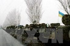 Ukraine vi phạm lệnh ngừng bắn tại Donetsk 50 lần trong vòng một ngày