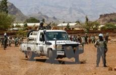 Sudan bắt giữ thủ lĩnh phiến quân lớn nhất ở Darfur